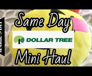 video, haul, and dollar store image