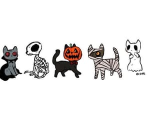 cats, Halloween, and header image