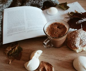 autumn, book, and chocolate image