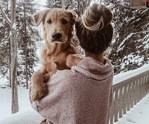 dog, girl, and winter image