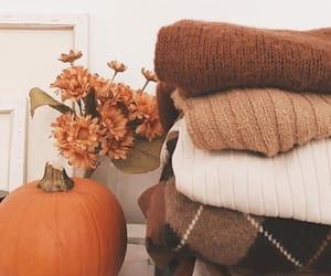 autumn, pumpkin, and sweater image
