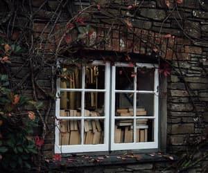 autumn, bookstore, and books image