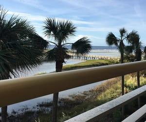 beach, palmtrees, and scenery image