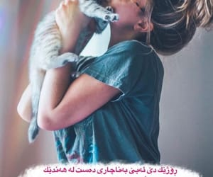 cat, girl, and nice image