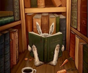 books and bunny image