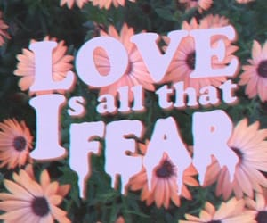 love, grunge, and fear image