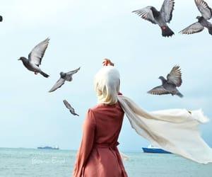 bird, hijab, and muslim image
