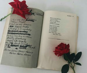 book, letters, and lettering image