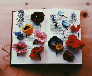 books, words, and flowers image