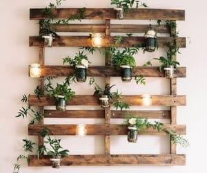 plants, decoration, and diy image