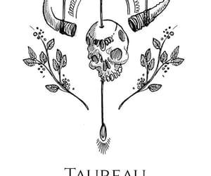 zodiac, taurus, and horoscope image