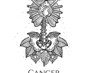 cancer, sign, and Signe image