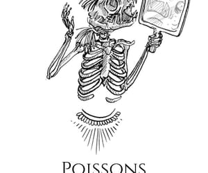 animal, poissons, and sign image