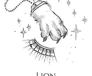 animal, Leo, and lion image