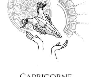 capricorn and zodiac image