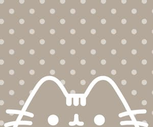 pusheen cat, polkadot, and background image