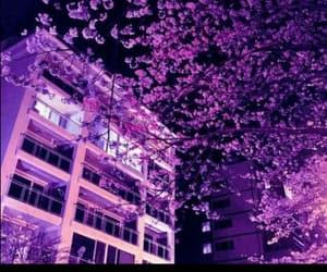 purple, aesthetic, and tree image