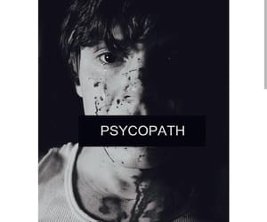 psycopath and american horror story image