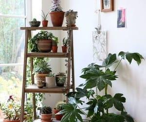 cosy, design, and decor image