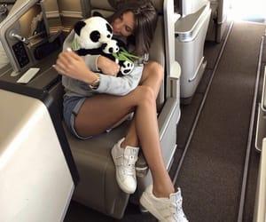 luxury, panda, and plane image