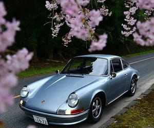 911, car, and flowers image