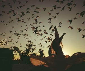 birds, girl, and photography image