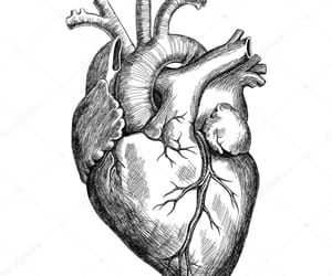 heart, tattoo, and Tattoos image