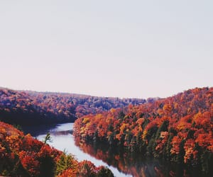 autumn, nature, and colors image