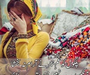 shayari and urdu shayari image