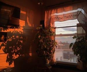 shadow, aesthetic, and orange image