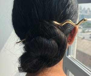 snake, bun, and hairstyle image
