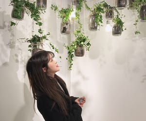 plants, ulzzang, and white image