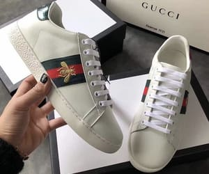bag, gucci, and sneakers image