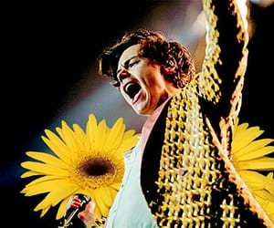 tour and harrystyles image