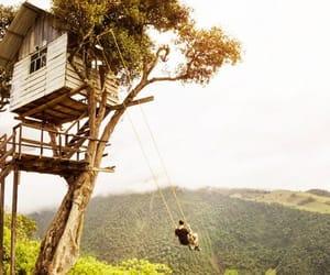 adventure, ecuador, and swing image