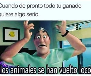 Animales, relacion, and chiste image