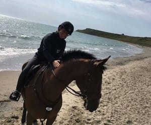 bay, beach, and equestrian image