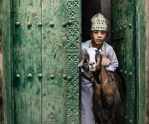 animals, arab, and art image