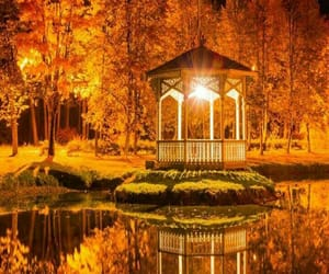autumn, beautiful, and light image
