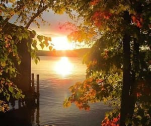 autumn, fall, and sunset image