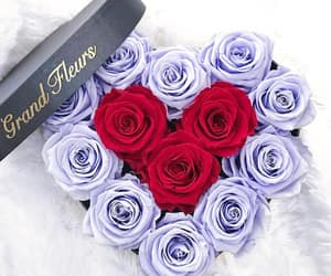 flowers, heart, and purple image