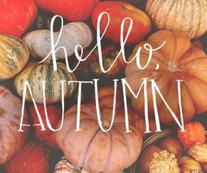 autumn, fall, and hello autumn image