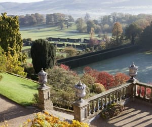 garden, Powys, and wales image