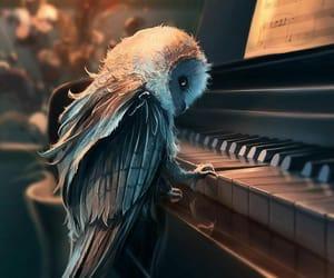 owl, art, and music image