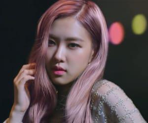 korean, kpop, and rose image