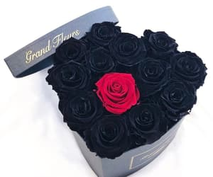 beautiful, flowers, and black image