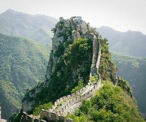 nature, china, and photography image