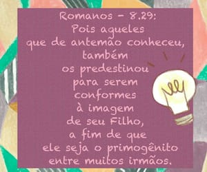 amor, article, and bom dia image