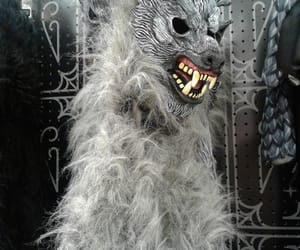costume, moon, and werewolves image