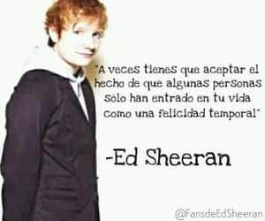 frases, ed sheeran, and frases de desamor image